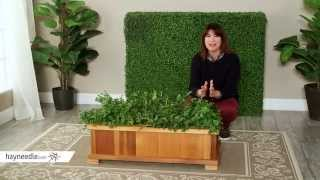 Wood Country Rectangle Cedar Wood Boise Patio Planter Box - Product Review Video