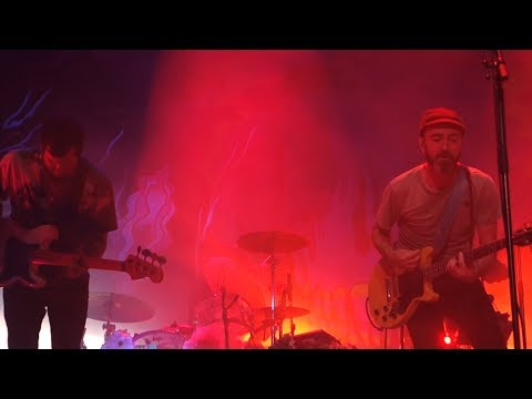 The Shins - Kissing The Lipless – Live In Berkeley