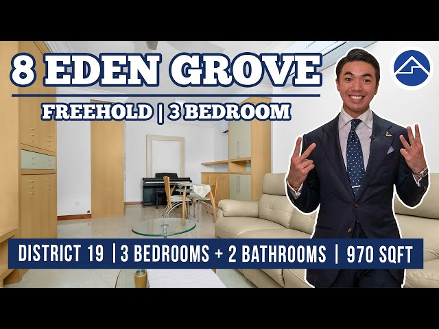 [SOLD!!!]Serangoon 3 Bedroom Freehold Property [Super Cozy] | 8 Eden Grove
