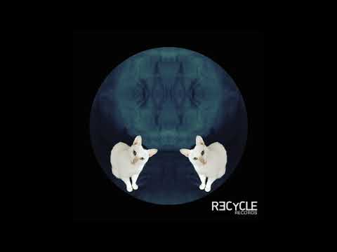 Max Rosardo - Mood Fly (Recycle Records)