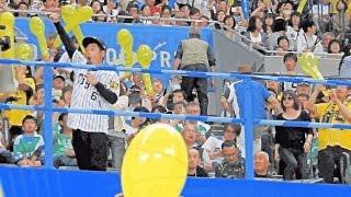 2016.6.11 ・札幌ドーム ・北海道日本ハムファイターズvs阪神タイガース.