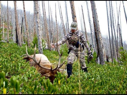 2018 Montana Archery Elk Hunt - Full Movie