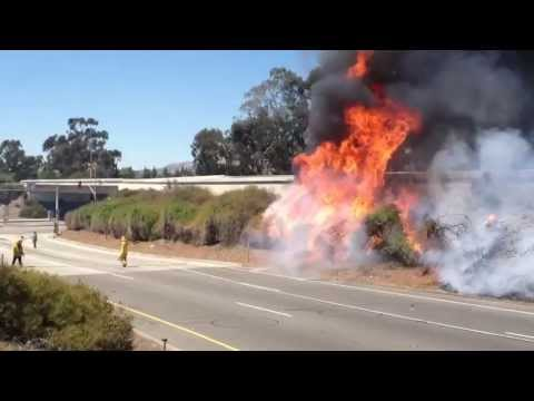 LAFD Brush Fire 118 Freeway