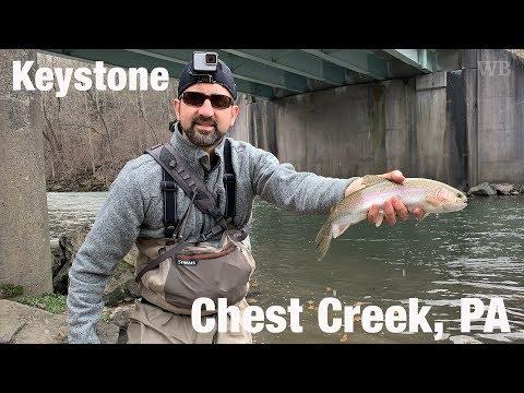 WB - Keystone Select Fly Fishing, Chest Creek, PA - November '18