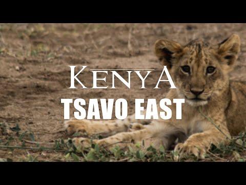 KENYA 2017 - Tsavo East National Park
