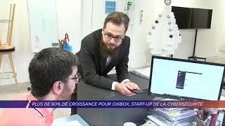 Yvelines | Plus de 60% de croissance pour Oxibox, start-up de la cybersécurité