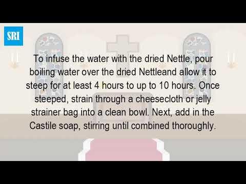 how-do-you-make-nettle-shampoo