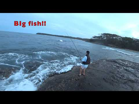 Near Jervis Bay, Bendalong Rock Fishing