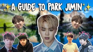 An Introduction to BTS: Jimin Version