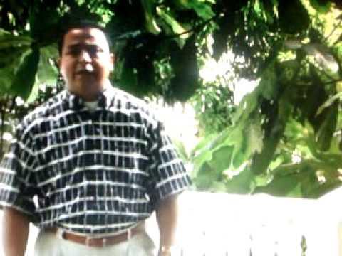 Luis Alberto Vallejo - Cinco Panes
