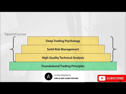 THE BEST TRADING COURSE FOR FOREX BEGINNERS- The 6 Dimensions of a Professional Trading Strategy 01