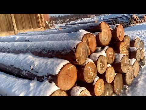 Заморочки СТРОПАЛЬЩИКА - Работа стропальщика на пилораме - ложим круглый лес на распиловку
