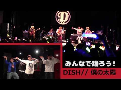 DISH// 『僕の太陽』みんなで踊ろう!