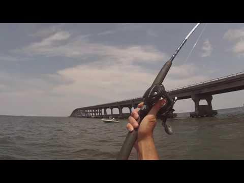 2014 Nags Head Fishing