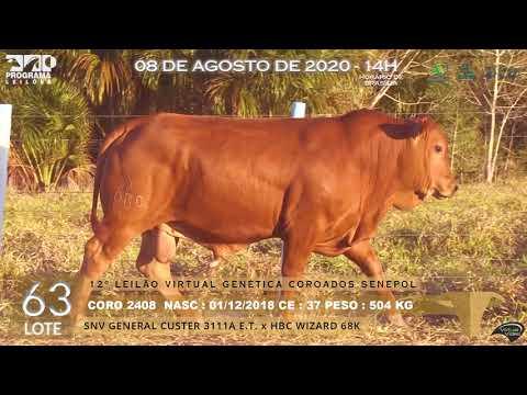 LOTE 63 CORO 2408