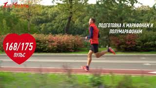видео Бренд Falke