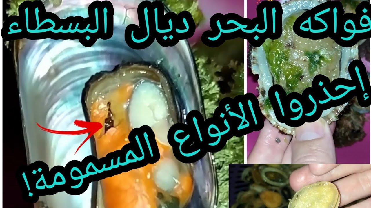 أسرار و معلومات حصرية! أرخص نوع!فروقات بينها! طريقة الطهي وها علاش ممنوعة! #أكواريوم المغرب
