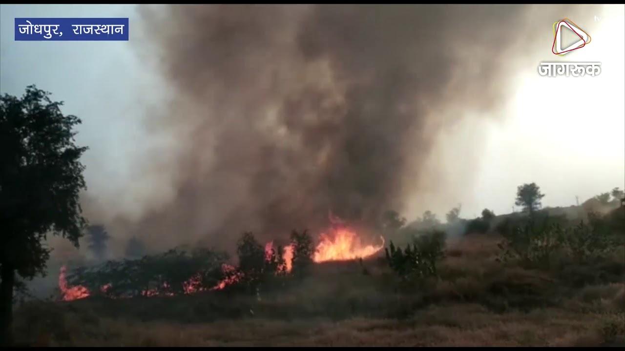 जोधपुर : आईआईटी की खाली जमीन में लगी आग