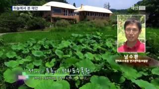 태안TV - 하늘에서본태안천리포수목원