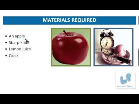 General knowledge videos for kids Lemon Juice Keeps Apples Fresh-Science Activity