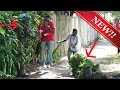 THE BEST BUSHMAN SCARE PRANK - 2 BUSHMAN - FUNNY VIDEO - TAMPA BAY FLORIDA Funny prank - Scare Prank