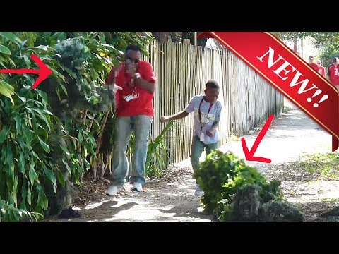 THE BEST BUSHMAN SCARE PRANK – 2 BUSHMAN – FUNNY VIDEO – TAMPA BAY FLORIDA Funny prank – Scare Prank