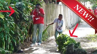 THE BEST BUSHMAN SCARE PRANK - 2 BUSHMAN - FUNNY VIDEO - TAMPA BAY FLORIDA Funny prank - Scare Prank