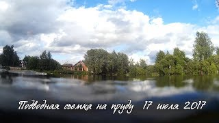 Подводная съёмка в Хлебниково