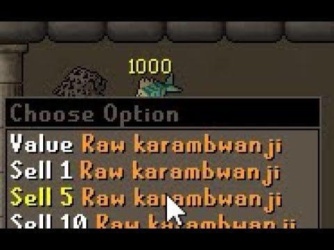 Karambwans UPDATED - BEST AFK FISHING IN GAME