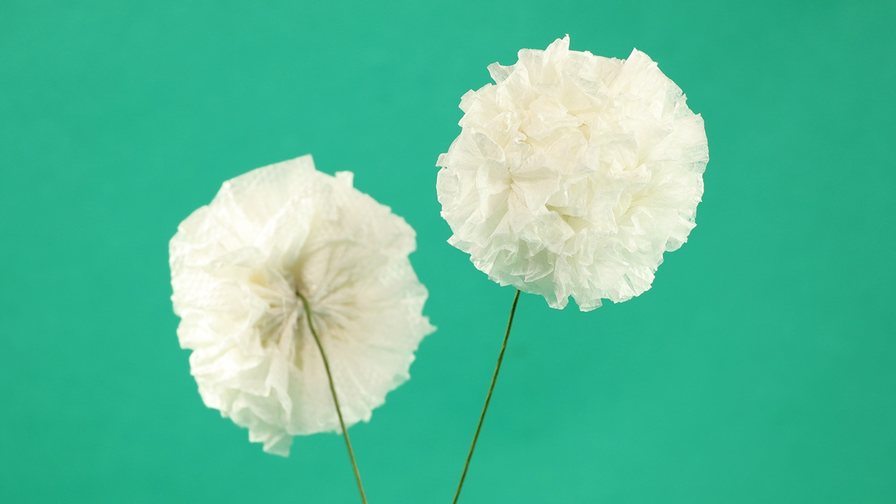 Tissue Paper Flower Craft - White Pom Pom Flower DIY Tutorial - YouTube