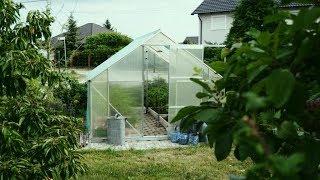 Jak wykorzystać plastikowe butelki w ogrodzie? Warzywniak, rośliny i eko szklarnia🌱