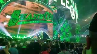 Shane McMahon Entrance Wrestlemania 34 Audience POV