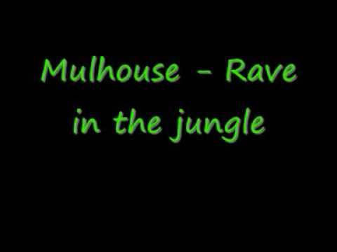 Mulhouse - Rave In The Jungle