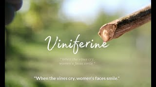 Caudalie - Tales from the vineyard - Viniferine