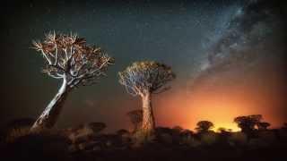 Tusk Photo - Namibia Landscapes & Wildlife Safari