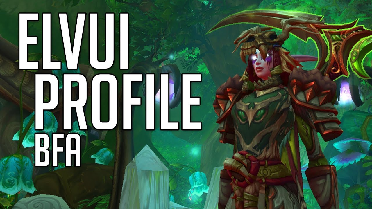 ElvUI Profile and UI Setup - 8 0 BfA