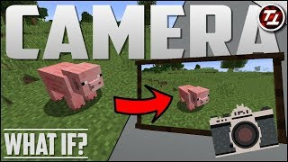 What If Minecraft had a Camera?!