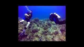 Diving Okinawa (April - May 2014)