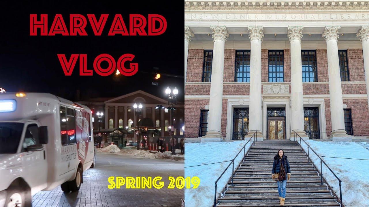 (中文English Subs) ️ Elaine Hau - Vlog: 哈佛校園生活 Harvard School Life  </p>                 </div>                                        </div>                  <div class=