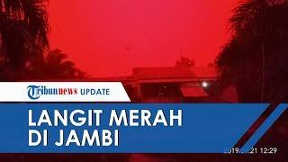 Viral Langit Merah Di Jambi Akibat Kebakaran Hutan Lahan 30 Titik Api Segera Dipadamkan