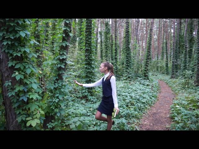 Юлия Артёменко читает произведение «Детство» (Бунин Иван Алексеевич)