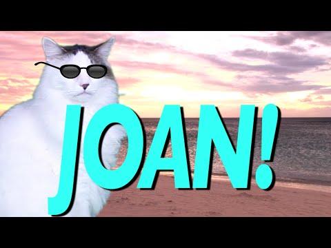 Happy Birthday Joan Epic Cat Happy Birthday Song Youtube