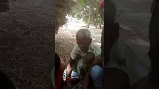 Manu baba Video