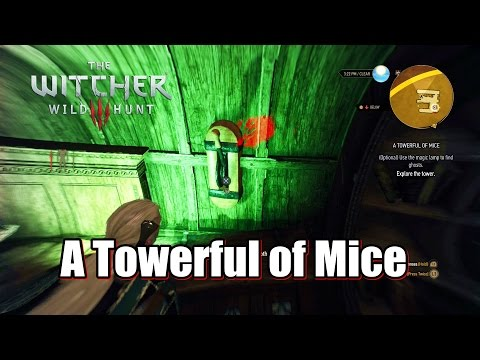 The Witcher 3 Wild Hunt use the magic lamp to find ghosts A Towerful of Mice