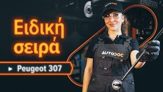 Πώς αλλαζω Λάδι κινητήρα PEUGEOT 307 SW (3H) - δωρεάν διαδικτυακό βίντεο