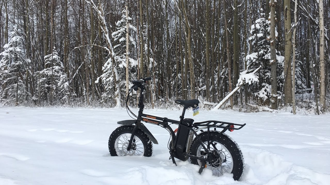 Rad Power Bikes Rad Mini Alaska Snow Ride Electric