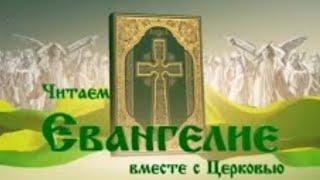 Читаем Евангелие вместе с Церковью. 24 июня 2020