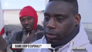 Siamo coop o caporali? - #cartabianca 25/01/2018