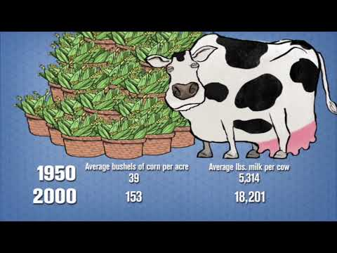 Food Fight: How Corporations Ruined Food (Food Industry Documentary) Real Stories