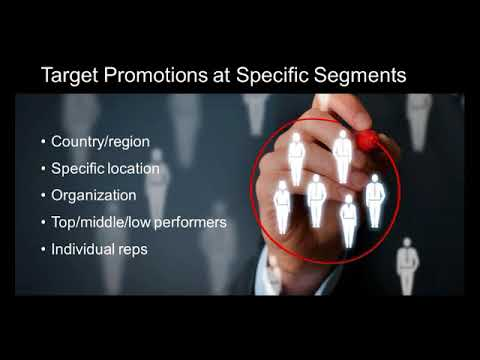Maximizing Your Channel Incentive Program